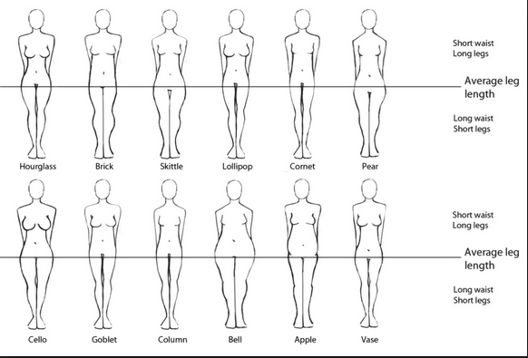 12 Body Shapes Luxor Finch